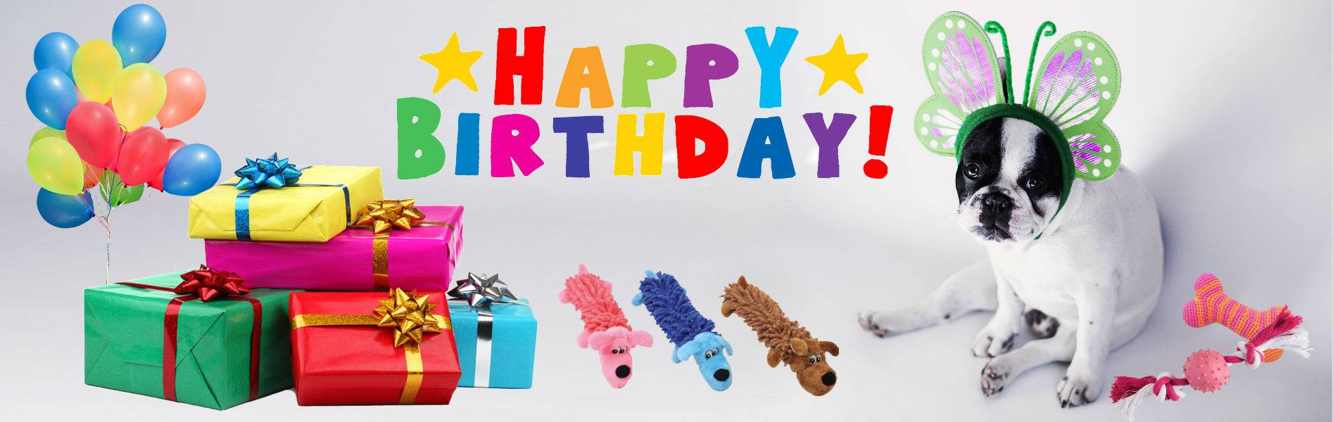 doggy birthdays